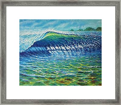 Dolphin Surf Framed Print by Joseph   Ruff