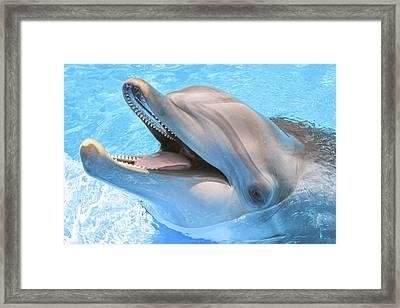 Joyous Smile Framed Print