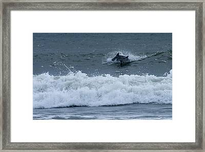 Framed Print featuring the photograph Dolphins At Play by Greg Graham