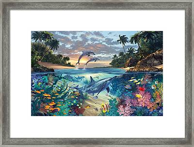 Dolphins Playground Framed Print by Steve Read