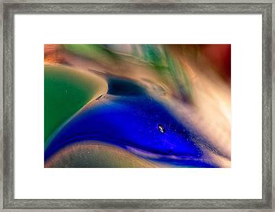 Dolpins Framed Print by Omaste Witkowski