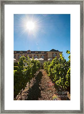 Domaine Carneros Sun - Winery And Vineyard With Sun Flare In Napa Valley California Framed Print by Jamie Pham