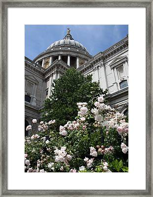 Dome Of St Paul's Framed Print by Stephen Norris