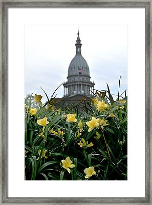 Dome Through The Daffodils Framed Print