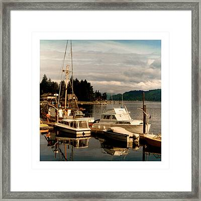 Domino At Alderbrook On Hood Canal Framed Print