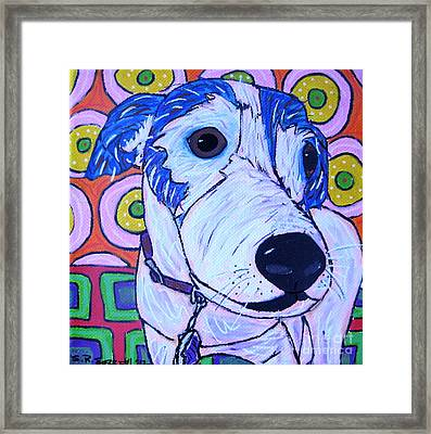 Domino Dog Framed Print by Susan Sorrell