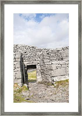 Don Angus Framed Print by Danielle Summa