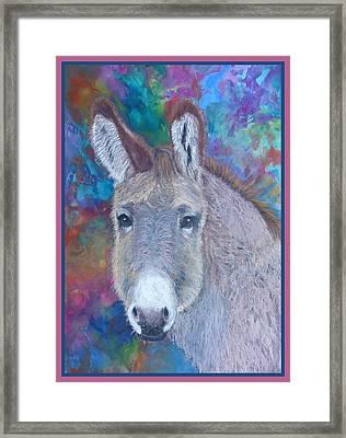 Donkey Face Framed Print