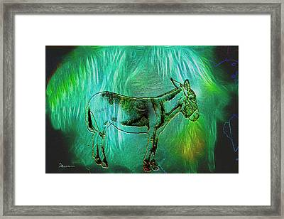 Donkey-featured In Nature Photography Group Framed Print by EricaMaxine  Price