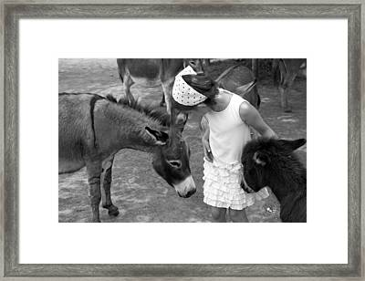 Donkey Whisperer Framed Print by Brooke T Ryan