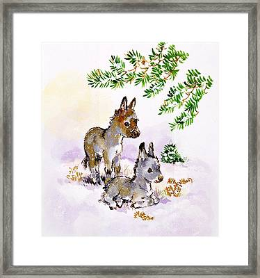Donkeys Framed Print by Diane Matthes