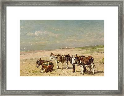Donkeys On The Beach Framed Print by Johannes Hubertus Leonardus de Haas