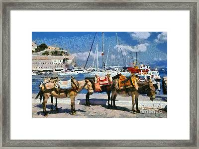 Donkeys Waiting For A Ride Framed Print