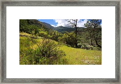 Donner Canyon In Late April Framed Print