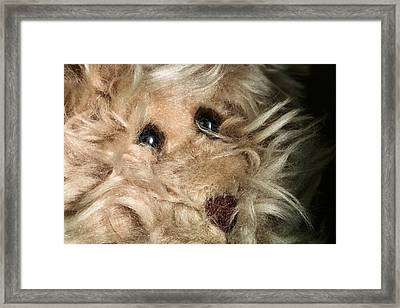Don't Be Scared To Love Me Framed Print by JC Findley