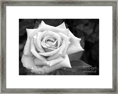 Don't Cry Framed Print by Sabrina L Ryan