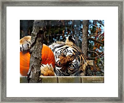 Don't Even Think About It Framed Print by Christy Ricafrente
