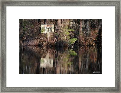 Don't Feed The Alligators Framed Print by Phil Mancuso