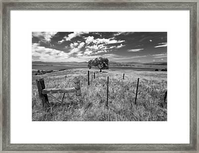 Don't Fence Me In - Black And White Framed Print
