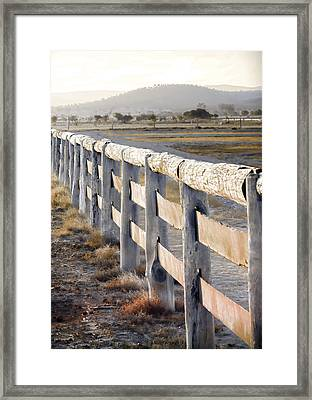 Don't Fence Me In Framed Print by Holly Kempe