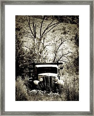 Don't Mind Me Framed Print by Terry Eve Tanner