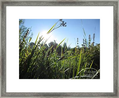Don't Say It's Over Framed Print
