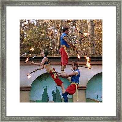 Don't Try This At Home Framed Print