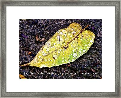 Don't Try Too Hard To Fit In You Were Born To Stand Out Framed Print by Jennifer Lamanca Kaufman