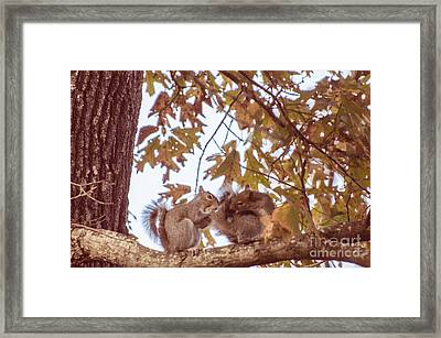 Don't Worry Be Happy Framed Print by Donna Brown