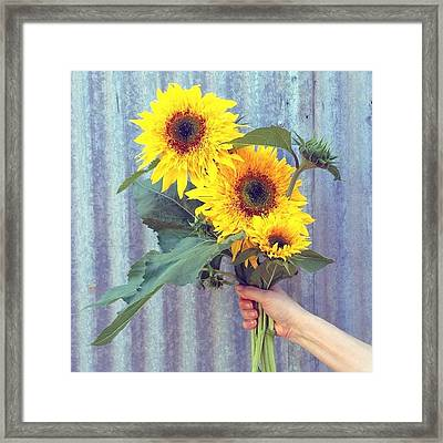 Don't You Just Love Summertime? Framed Print