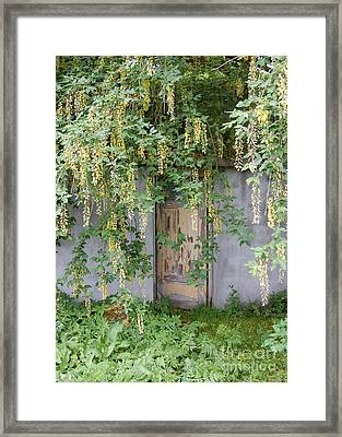 Framed Print featuring the photograph Door Hidden By Flowers by Linda Prewer