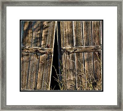 Doors Framed Print by Ron Roberts
