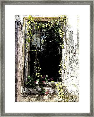 Doorway Delights Framed Print