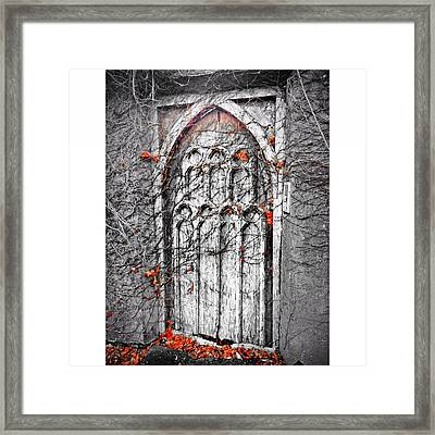Doorway In Cork Framed Print by Maeve O Connell