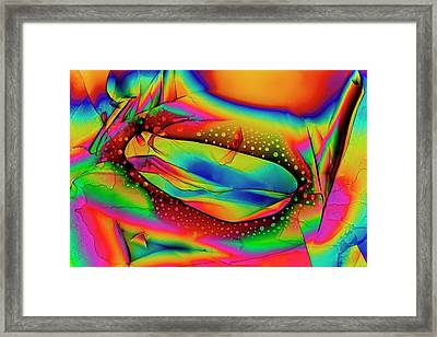 Dopamine Drug Crystals Framed Print by Antonio Romero
