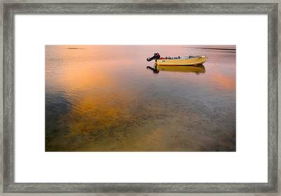 Framed Print featuring the photograph Dorato by Sandro Rossi