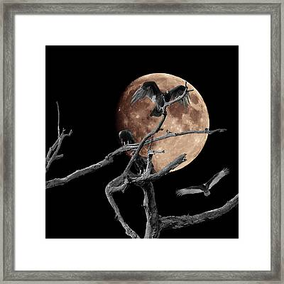Dormant Dreams 2 Framed Print
