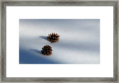 Dos Framed Print by Feva  Fotos