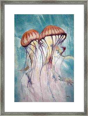 Dos Jellyfish Framed Print by Jeff Lucas