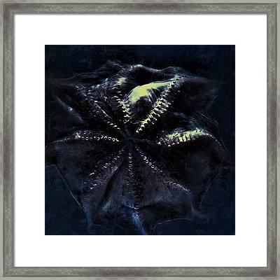 Dot  #aquarium #bw #blue #beautiful Framed Print