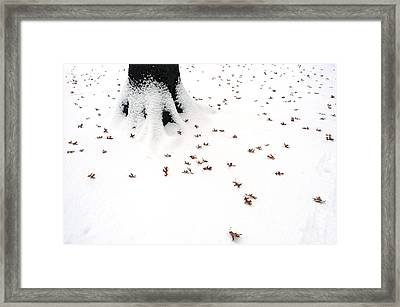 Dots Framed Print by Yue Wang
