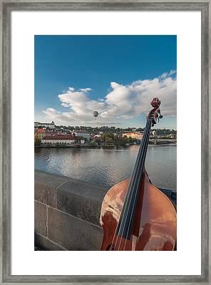 Double Bass Framed Print by Sergey Simanovsky