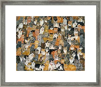 Double Cat Spread Framed Print by Ditz
