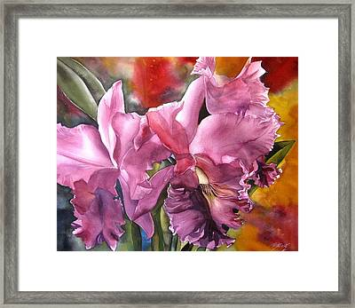 Double Cattleya Orchid Framed Print by Alfred Ng