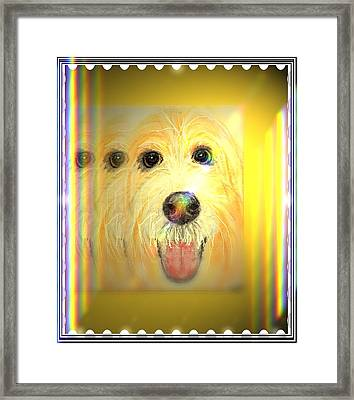 Double Dog Framed Print
