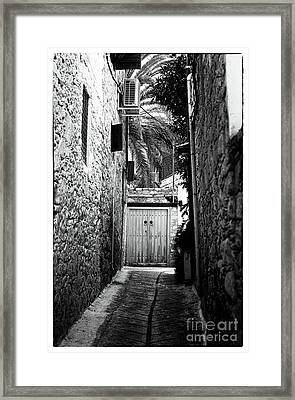 Double Doors In The Alley Framed Print by John Rizzuto