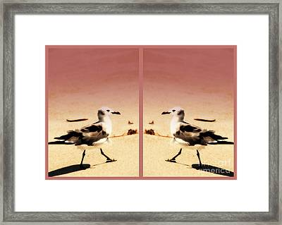 Double Gulls Collage Framed Print by Susanne Van Hulst