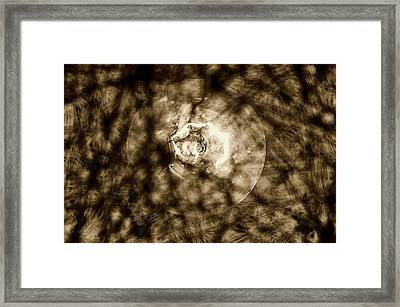 Double Insider Framed Print by Yevgeni Kacnelson