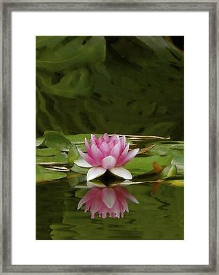 Double Lily Framed Print