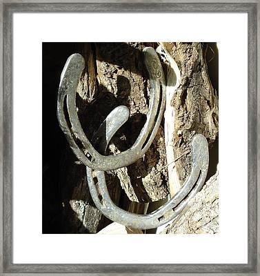 Framed Print featuring the photograph Double Luck by J L Zarek